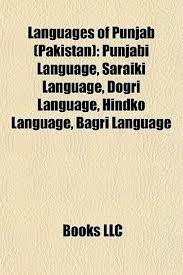 Punjabi Language Languages Of Punjab Pakistan Punjabi Language Saraiki Language
