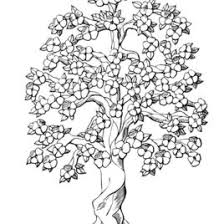 Small Picture Coloring Pages For Adults Trees Archives Mente Beta Most