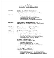 Freelance Writer Resume PDF Free Download