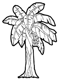 Small Picture Banana Tree Clipart Black And White Collection Coloring Coloring