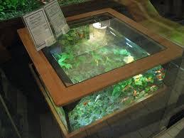 eye catching fish tank coffee table of aquarium