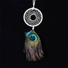Dream Catcher Without Feathers Handmade Dream Catcher Net with Peacock Feather Wall Hanging 16