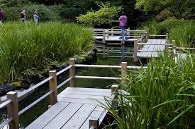 portland japanese garden looks to