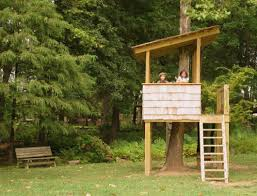 My Treehouse  Rope Bridge Backyard Trees And TreehousesDiy Treehouses For Kids