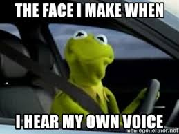 The face I make when I hear my own voice - Kermit Driving | Meme Generator