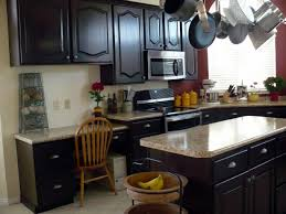 black kitchen cabinets with quartz countertops and hanging kitchen appliance for traditional kitchen design plus