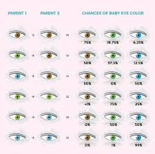 Eye Genetics Chart Baby Eye Color Calculator Chart And Predictor Momjunction