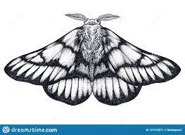Tattoo Griffin Stock Illustrations 479 Tattoo Griffin Stock