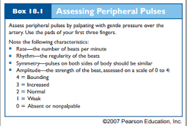 Peripheral Pulses Charting Assessing Peripheral Pulses Clinical Nurse Assessment