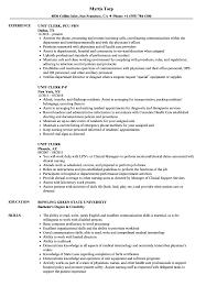 Hospital Unit Clerk Resume Unit Clerk Resume Samples Velvet Jobs