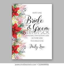 Sample Of Wedding Invatation Poinsettia Wedding Invitation Sample Card Beautiful Stock Vector
