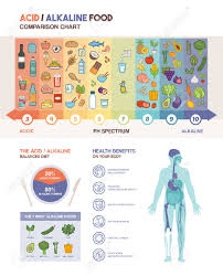 Acid Alkaline Balance Diet Chart The Acidic Alkaline Diet Food Chart Infographics With Food Icons