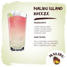 150 Best Malibu Rum Images On Pinterest  Drink Recipes Cocktail Party Cocktails With Rum