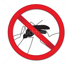 red sign ban mosquito stop mosquito insect vector ilration stock photo lucia fox midge