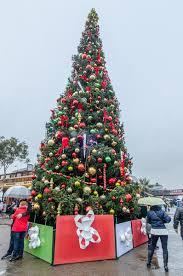 Fairmont Christmas Tree  PGu0026E CurrentsChristmas Tree In San Francisco