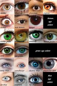 Iris Color Chart Eye Color Reference Chart Writing Writing Tips Writing