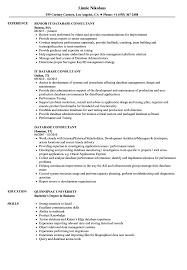 Database Consultant Resume Samples Velvet Jobs