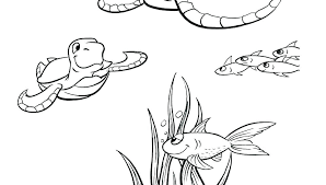 Desert Animal Coloring Pages Wild Animal Ring Pages Wildlife North
