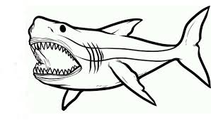 Portrayed in countless monster movies as creatures. Shark Coloring Pages Free Printable Coloring Pages For Kids