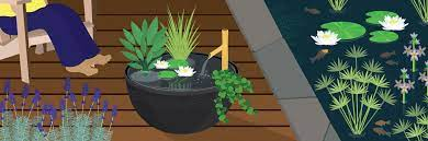bringing water features to your garden
