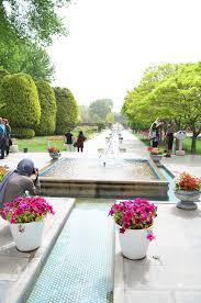 flowers garden. Flowers Garden O