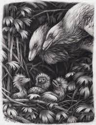 Emily Willoughby On Twitter Another Dinosaur Pencil Drawing That I Ve Been Working On Very Slowly For A Very Long Time A Pair Of Watch Over Their Trio Of Awkward Half Naked And