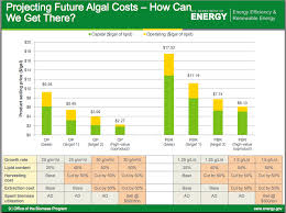 cost of producing biofuels from algae and pyrolysis figure