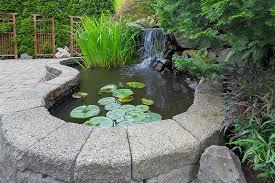 garden pond supplies. Great Prices And Exceptional Service. Garden Pond Supplies