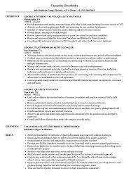 Quality Manager Resume Global Quality Manager Resume Samples Velvet Jobs 24