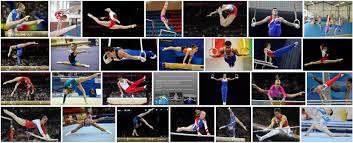 Реферат на тему спортивная гимнастика Нормы спорта и ГТО элементы спортивной гимнастики
