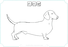 Coloring Pages Dachshund Coloring Pages Adult Funny Dachshunds