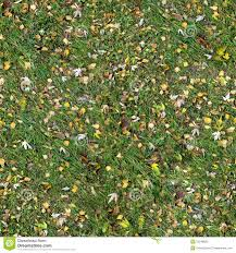seamless grass texture game. Square Seamless Texture Of The Grass With Fall Game