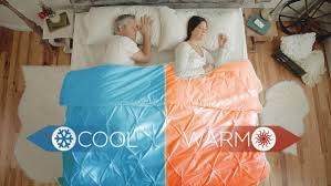 bed heater and cooler. Beautiful Bed V2 Dual Zone Climate Comfort System With Biorhythm Sleep Technology With Bed Heater And Cooler I