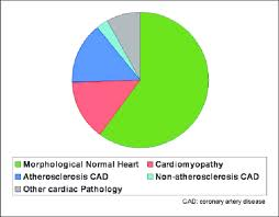 Pie Chart Showing The Causes Of Death In This Study