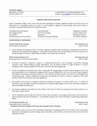 Detention Officer Resume Sample Inspirational Ethics And Pliance