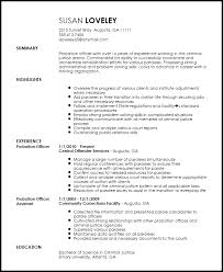 Assistant Probation Officer Sample Resume