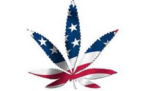 weed should be illegal the fix potamerica 0 jpg