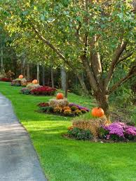 Fall for around the trees. Even without a long driveway, this fall  landscaping design would look beautiful around the base of any tree!