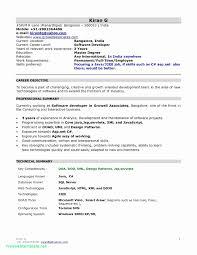 Resumes Free Download Pdf Format Beautiful Pdf Resume Builder