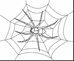 marvelous spider web coloring pages with spider coloring page ...