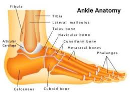 Ankle Fractures Core Em