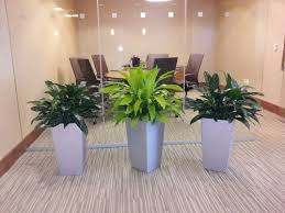 interior landscaping office. interior designs landscaping office