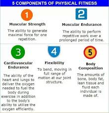 best physical education images crossfit wods 5 components of physical fitness