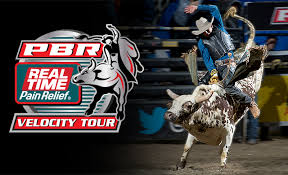 pro bull riding. Delighful Pro Professional Bull Riders And Pro Riding E
