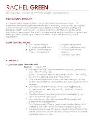 senior business analyst resume summary junior business analyst resume  business analyst sample resume - Business Analyst