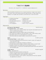 30 Unique Sample Resume For Wireless Sales Associate