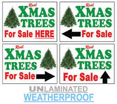 Christmas Xmas Trees For Sale Here Aro Left Right Signs A3 A2 A1