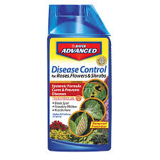 Shop BAYER ADVANCED Disease Control 32-oz Garden Fungicide at ...