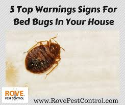 5 top warnings signs for bed bugs in