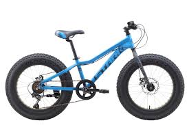 <b>Велосипед Stark Rocket Fat</b> 20.1 D (2019) : характеристики, цены ...